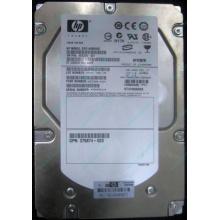 HP 454228-001 146Gb 15k SAS HDD (Архангельск)