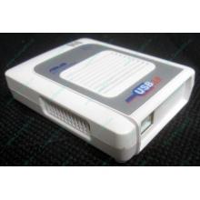 Wi-Fi адаптер Asus WL-160G (USB 2.0) - Архангельск